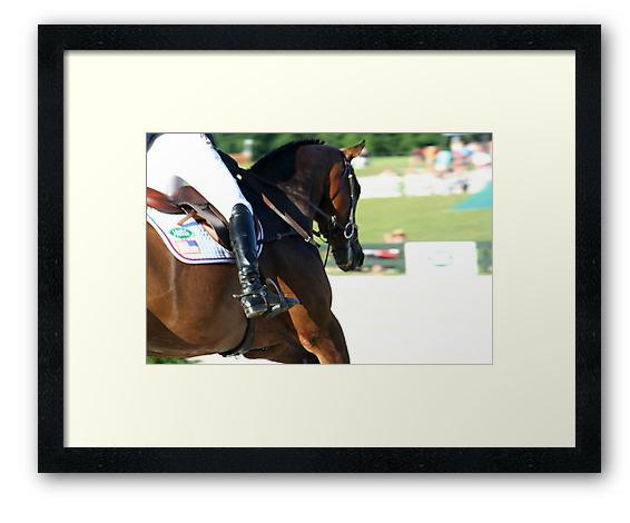 Sport Horse Fanstuff