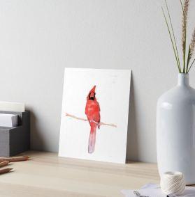 cardinal art board
